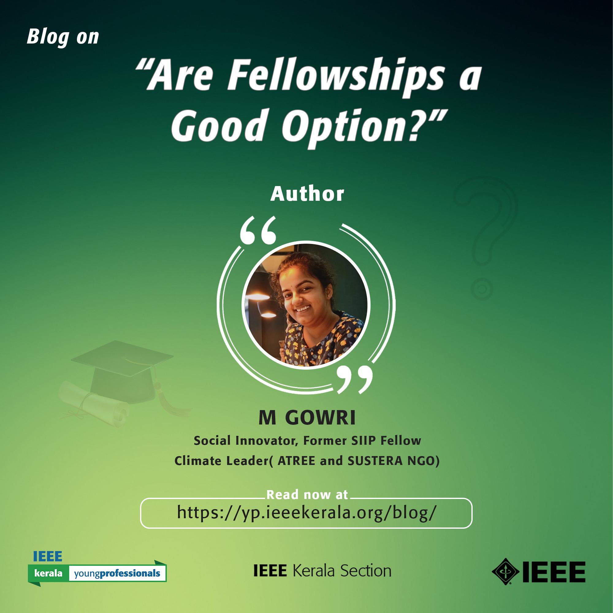Are Fellowships A Good Option?